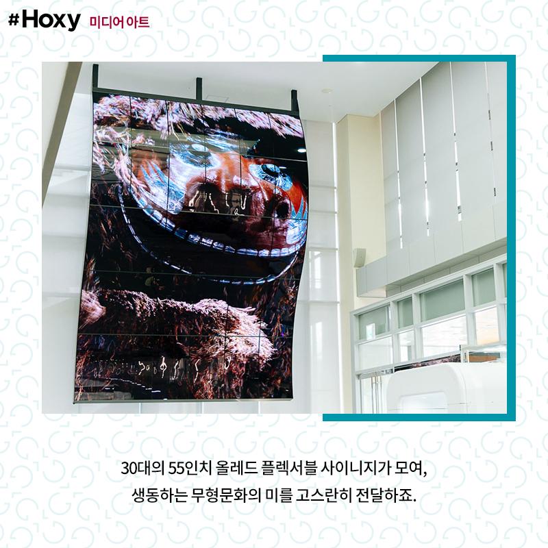 전주 국립무형유산원 얼쑤마루 로비에 설치된 LG 올레드 플렉서블 사이니지에 사자탈 탈놀이 영상이 나오는 모습