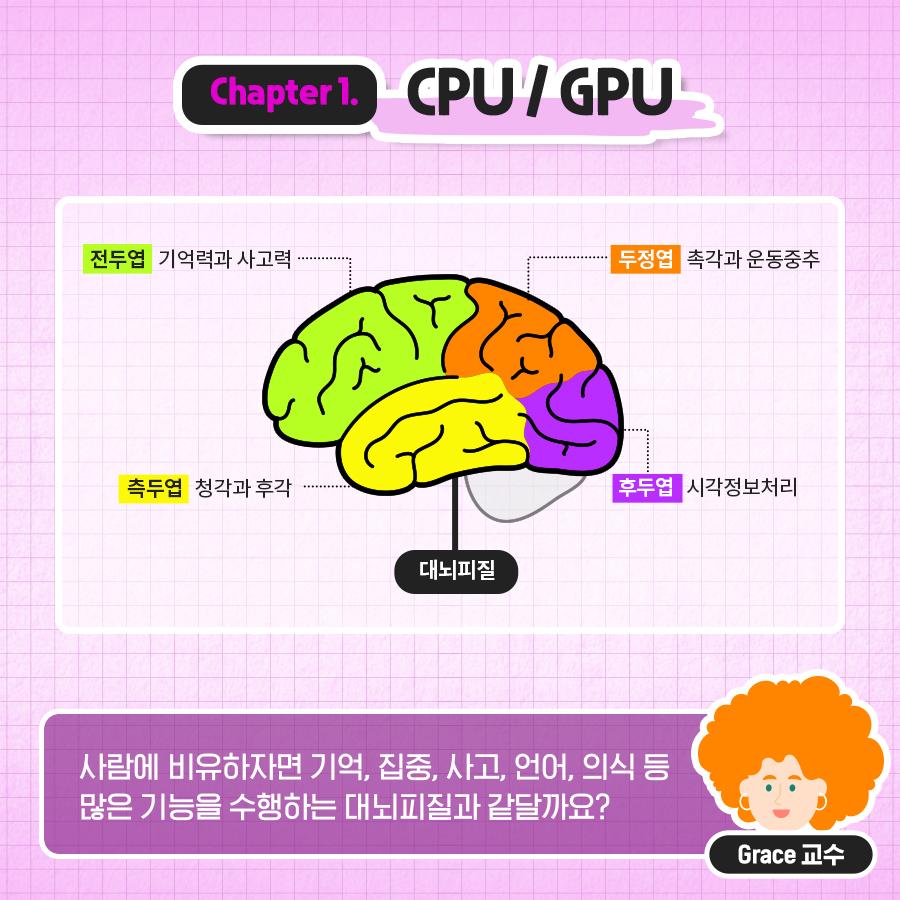 사람에 비유하자면 기억, 집중, 사고, 언어, 의식 등 많은 기능을 수행하는 대뇌피질과 같달까요?