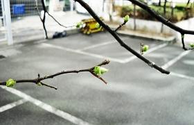 겨울과 아름답게 이별하는 방법