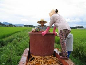 부모님과 아들이 경운기 안에 농약통을 바라보는 모습