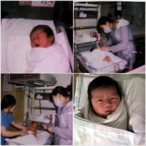 태어난지 얼마 안된 갓난 아이의 사진