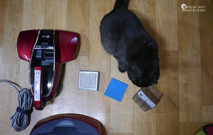 침구청소기, 고양이 사진