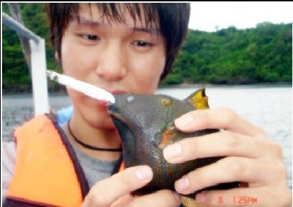담배를 태우고 있는 물고기 사진
