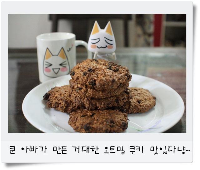 쿠키 사진