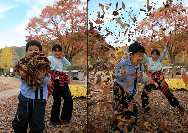 낙엽을 가지고 노는 아이들 사진