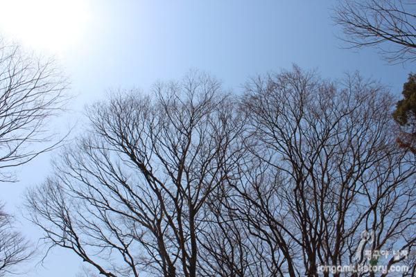 눈부신 하늘