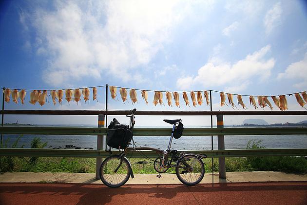 멋진 풍경을 만나면 자전거를 세우고 감상