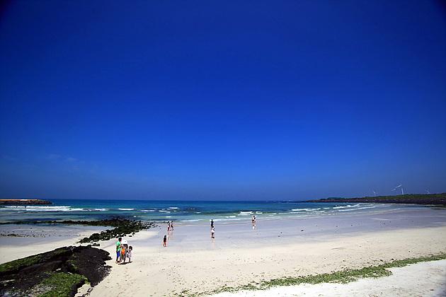 시원한 월정리 해변