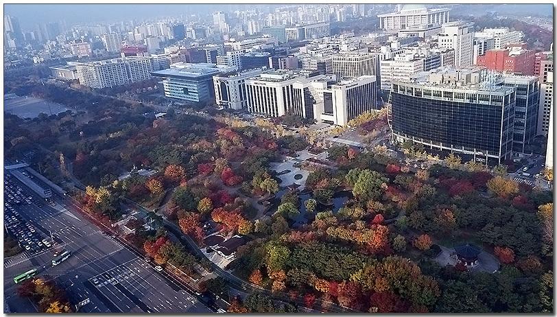 MC연구소 이성진 부장이 LG G 플렉스로 여의도 트윈타워에서 촬영한 여의도 공원의 단풍으로 가득한 모습이다