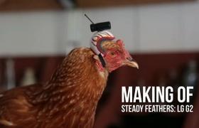 닭의 전정 안구반사 활용 영상 제작