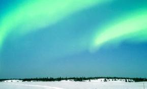 'LG G프로2', 겨울왕국에서 오로라를 만나다