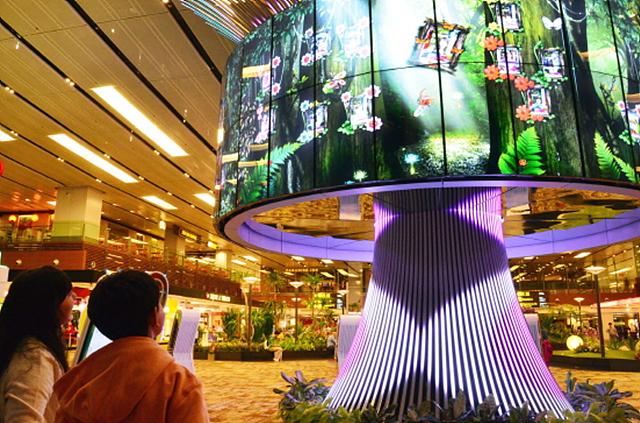 싱가포르 공항 설치되어 있는 아름다운 조형물 '소셜트리'