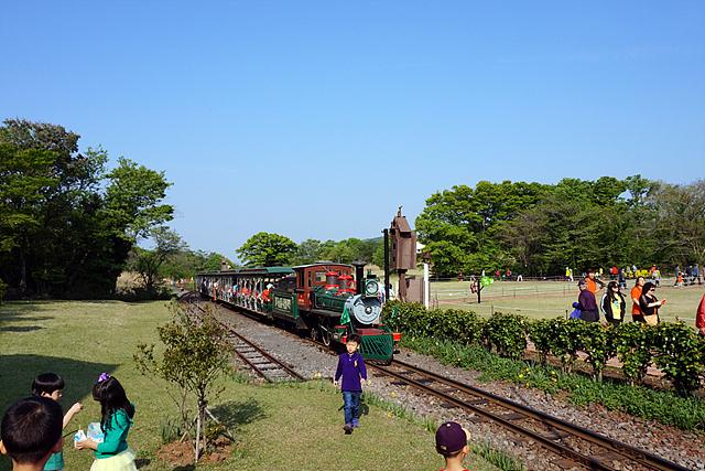 에코랜드를 가로지르며 달리는 기차의 모습이다. 주변에 푸른 하늘과 나무들이 싱그럽게 느껴진다