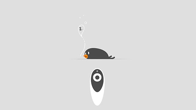 빈버드_pairing_스마트 리모콘을 활용하는 까만새의 모습. 잠을 자고 있다.