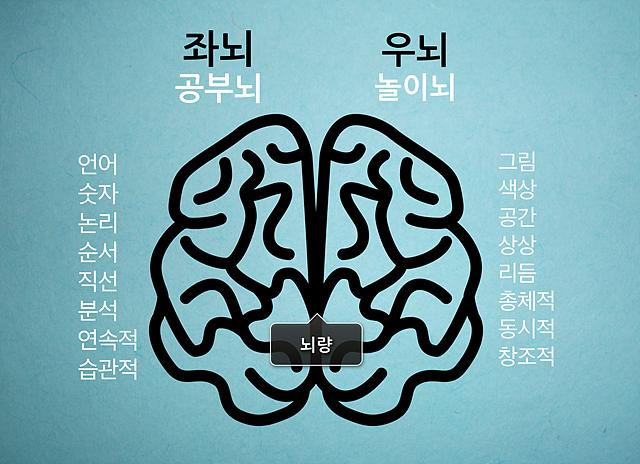 좌뇌와 우뇌의 특징. 좌뇌는 공부뇌 (언어, 숫자, 논리, 순서, 직선, 분석, 연속적, 습관적), 우뇌는 놀이뇌(그림, 색상, 공간, 상상, 리듬, 총체적, 동시적, 창조적)