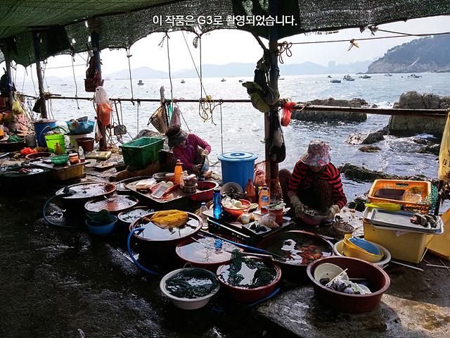 바다를 뒤로 해산물을 판매하고 있는 해녀들의 모습