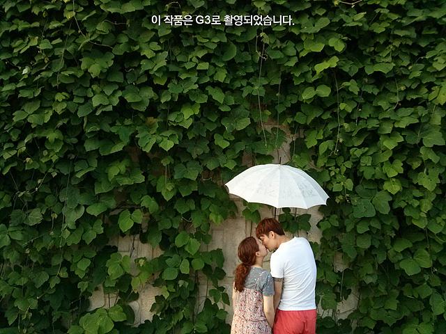 담쟁이넝쿨이 무성한 벽 앞에서 흰색 우산을 쓴 채 입을 맞추고 있는 남녀의 모습.