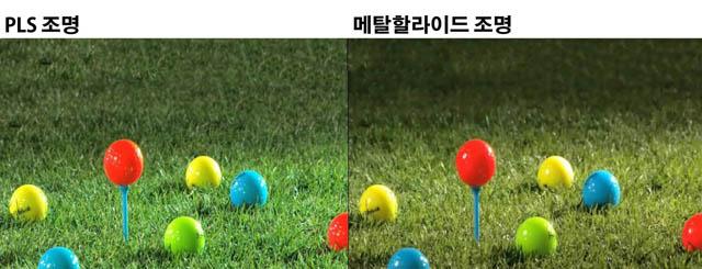 LG전자 PLS조명과 메탈할라이드 조명 아래서의 색감 비교한 사진 입니다.
