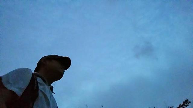 하늘을 배경으로 밑에서 촬영한 사진