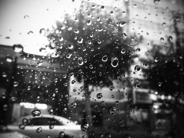 빗방울이 맺혀 있는 유리창. 흑백사진.