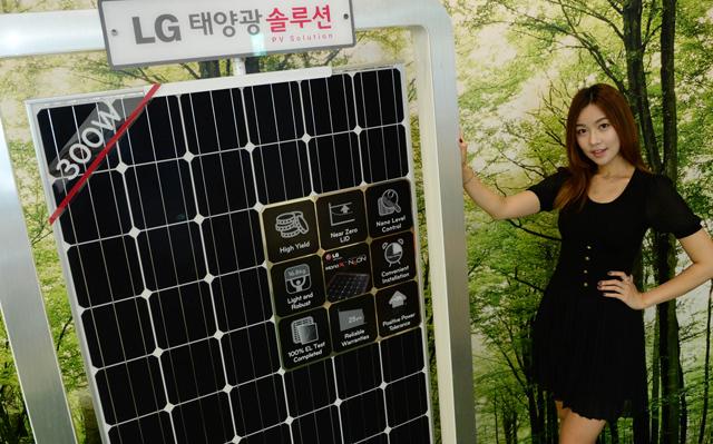 모델이 태양광 모듈 '모노 엑스 네온' 제품과 함께 포즈를 취하고 있습니다.