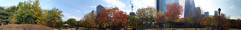 파노라마로 촬영한 여의도 공원의 모습