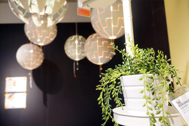 이케아(IKEA) 쇼룸의 모습. 작은 화분에 담긴 녹색식물 뒤로 천장의 독특한 조명이 보인다.