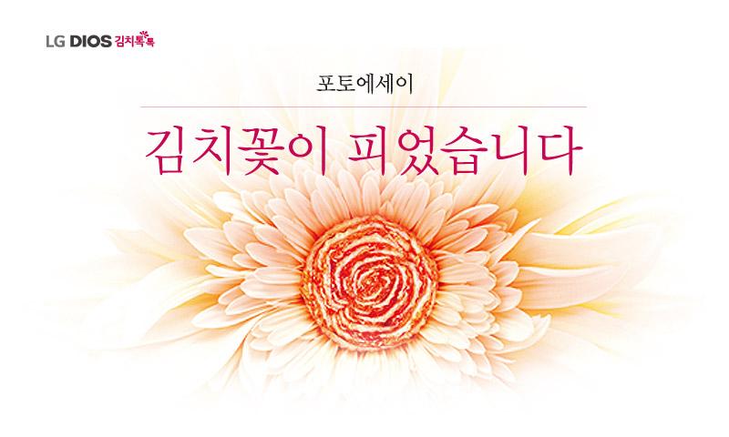 [포토에세이] 김치꽃이 피었습니다