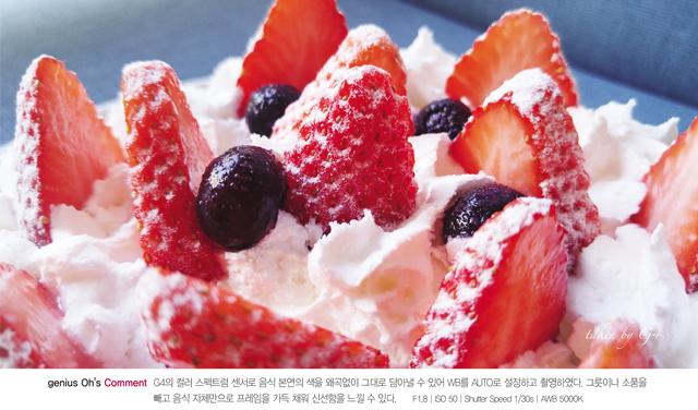 G4 컬러스펙트럼 및 WB 조절 음식사진