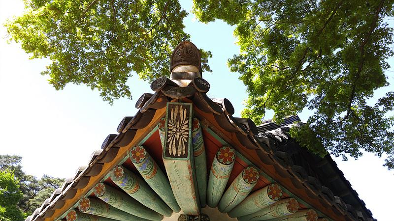 전등사의 처마를 촬영한 사진. 푸른 나뭇가지가 뒤로 함께 보인다.