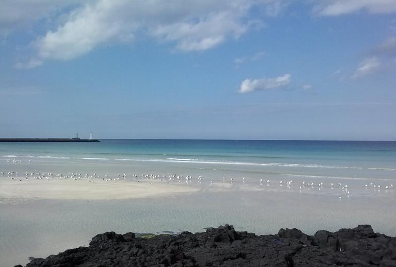 해 맑은 날 찍은 시원한 제주도 바다 모습
