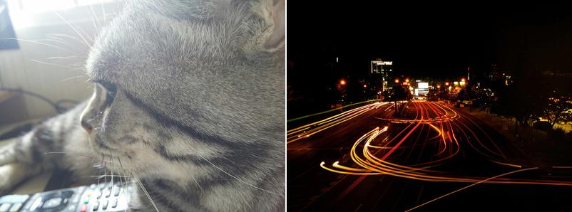 고양이의 모습(좌), 야경의 모습(우)