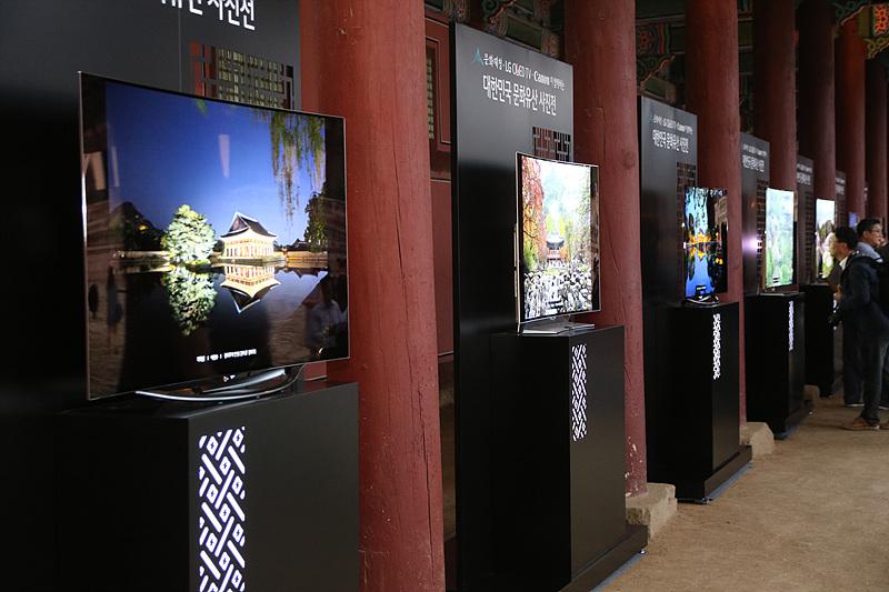LG 올레드TV가 전시되어 있다.