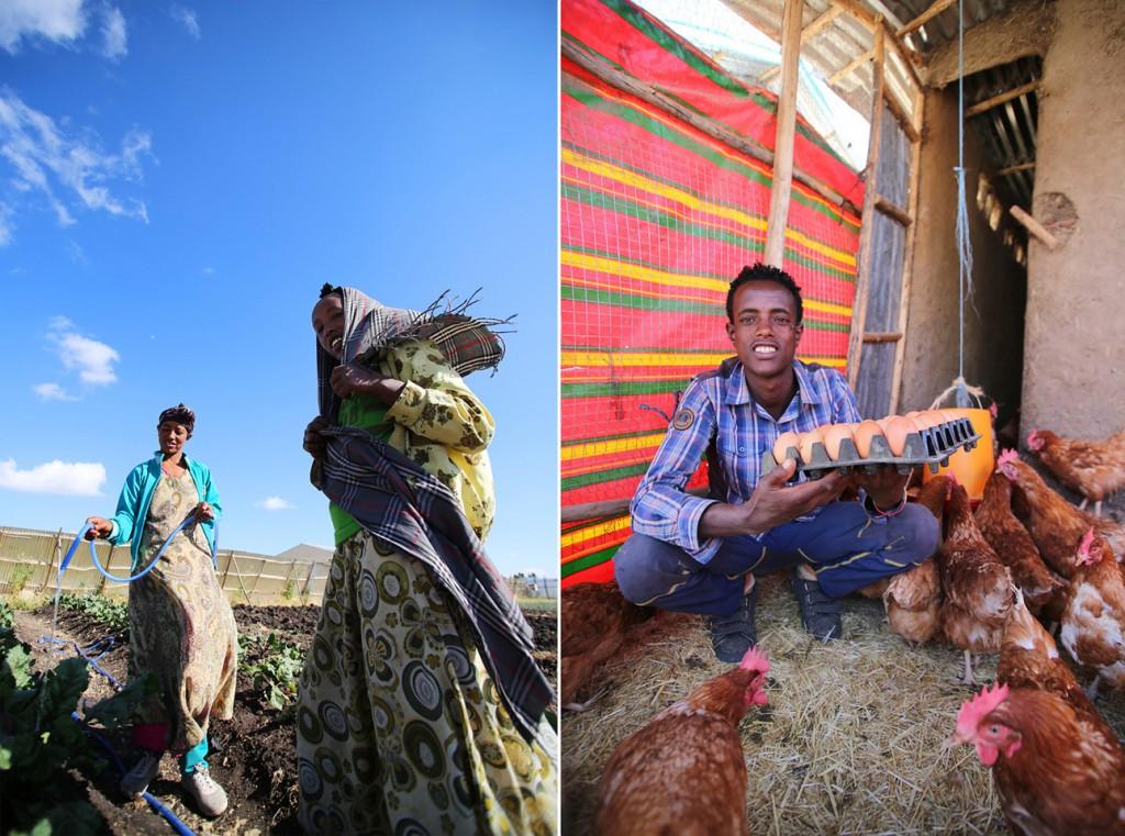 푸른 하늘을 배경으로 한 여인 두명의 모습(왼쪽), 닭장 안에서 달걀을 들어 보이는 남성의 모습(오른쪽)