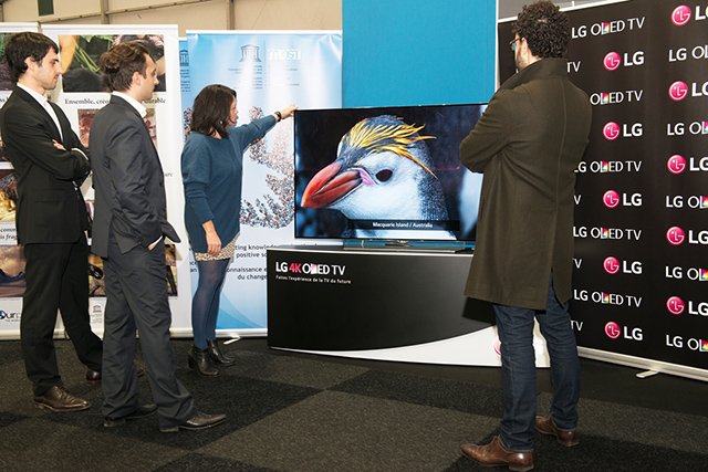 관람객들이 프랑스에서 열리고 있는 '기후변화협약 당사국총회'의 유네스코 전시관에 설치된 LG 울트라 올레드 TV를 통해 호주 맥쿼리 섬의 로열펭귄의 모습을 감상하고 있습니다.