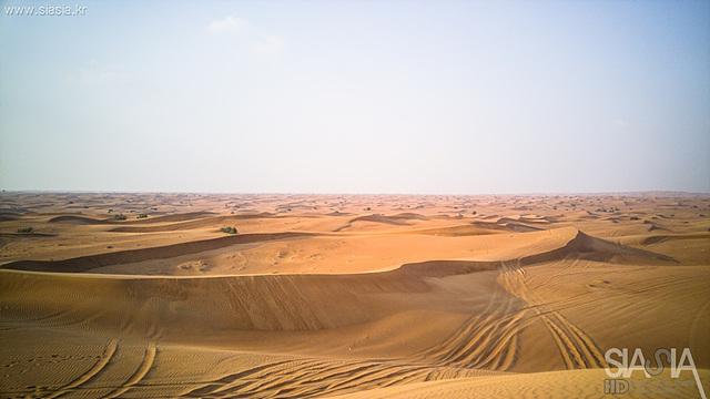 사실 두바이에 가면 꼭 들려봐야 할 곳은 바로 사막입니다. 사막 위에 세워진 최첨단 도시인 두바이의 시가지에서 조금만 벗어나면 바로 사방이 모래인 사막이 등장합니다.