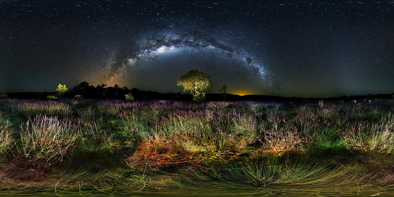 LG 360 월페이퍼 -브라질의 Favorito Grass