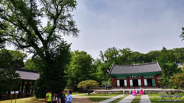 각종 드라마, 영화의 촬영 장소인 전주향교 모습