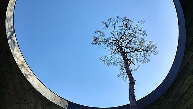 G5의 일반 카메라로 담아낸 하늘의 모습입니다.