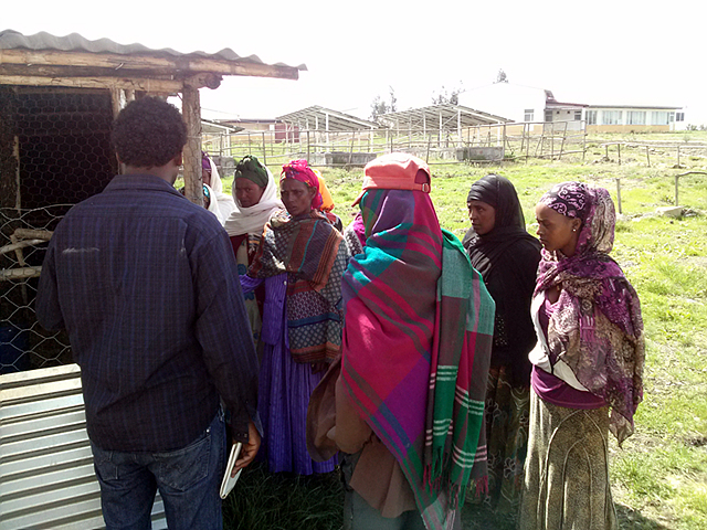 LG 희망마을 주민들이 양계 교육을 받고 있는 모습