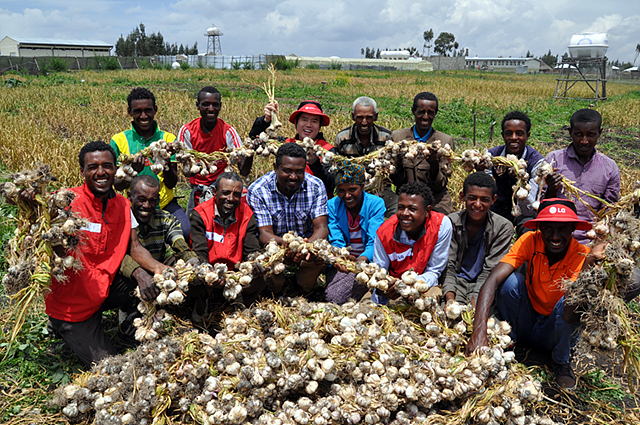 마늘 수확하고 기뻐하는 LG 희망마을 주민들 모습