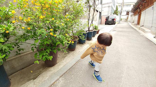 노란 꽃 화분이 있는 거리를 걷고 있는 아이의 모습을 G5로 촬영한 사진입니다.
