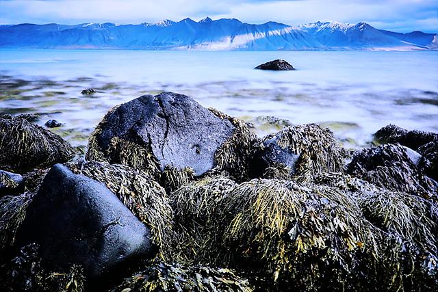 LG 올레드 TV의 선명함을 통해 아이슬란드 대자연 모습을 생생하게 볼 수 있습니다.