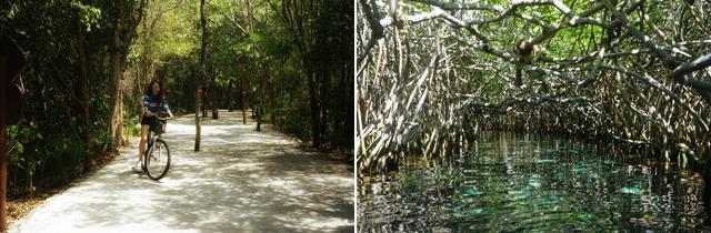 셀하에서 자연 유수풀, 다이빙, 스노클링 등 다양한 액티비티를 즐기는 모습