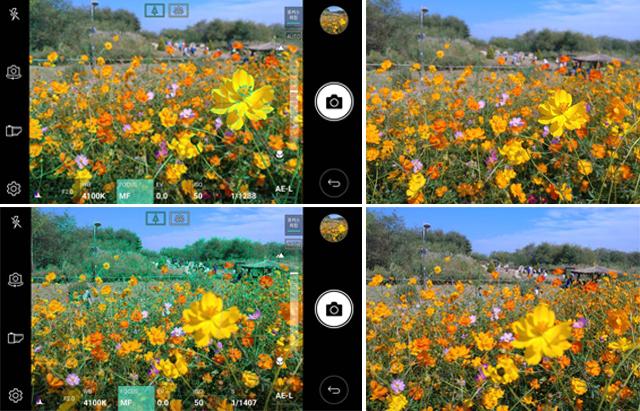 V20 포커스피킹 기능을 활용해 초점 미세조정 후 촬영한 사진