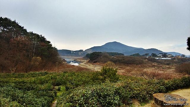 V20 일반촬영, 광각모드 (송하정 / 차 밭과 옥정호 풍경)