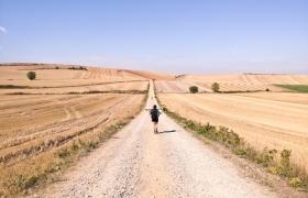 LG전자가 20일 홈페이지, 페이스북, 인스타그램 등을 통해 'LG V20 On The Way(온 더 웨이)' 프로젝트를 공개한다. LG V20 On The Way'는 유명 사진작가 안하진씨가 기획을 맡은 여행 사진 프로젝트다. 안 작가는 LG V20를 들고 지난 9월 20일부터 37일간 총 800km의 칠레 산티아고 순례길을 여행했다. 그녀는 매일 20km를 걸으며 접한 100여 개 마을과 주민들을 LG V20와 삼각대 등 최소한의 장비만을 이용해 사진에 담아냈다. 안 작가는 LG V20의 전문가 모드, 광각 카메라 등이 활용해 다양한 연출을 했다.
