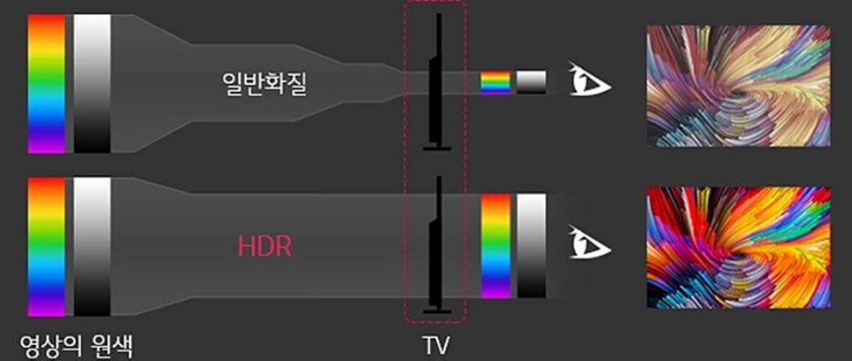 일반 화질과 HDR 영상의 원색 비교