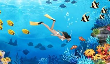 안식 휴가로 프리다이빙에 도전!