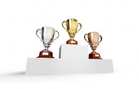 DJSI 소비내구재 분야 4년 연속 세계 1위